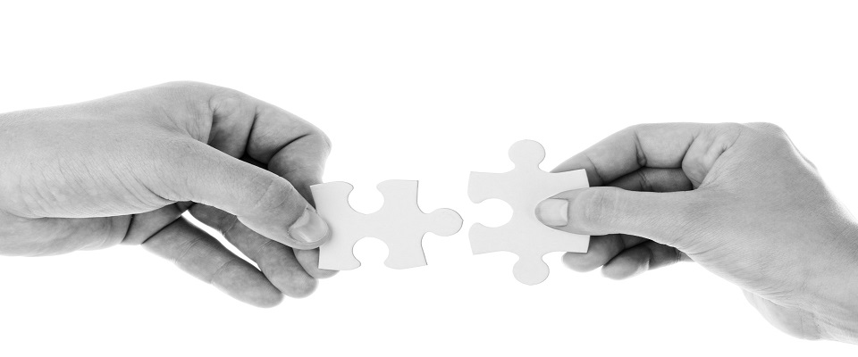 hands-holding-jigsaw website.jpg